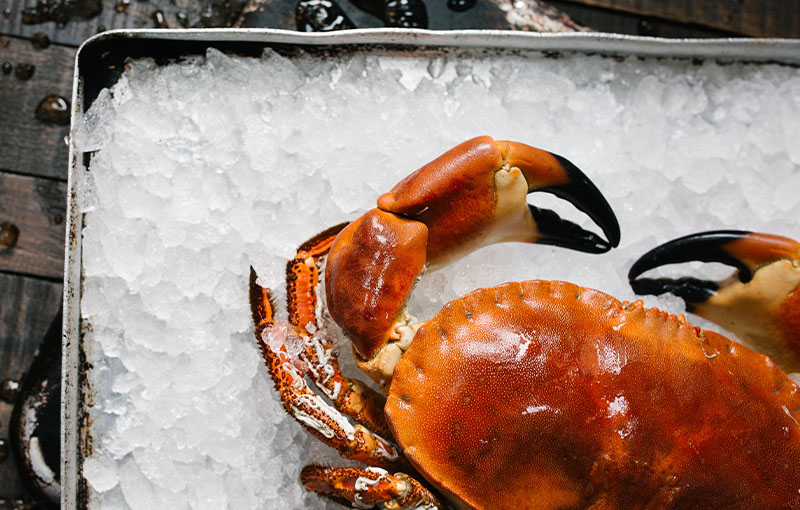 Seafood Distributor-How Eating Crabs Can Promote Good Health?