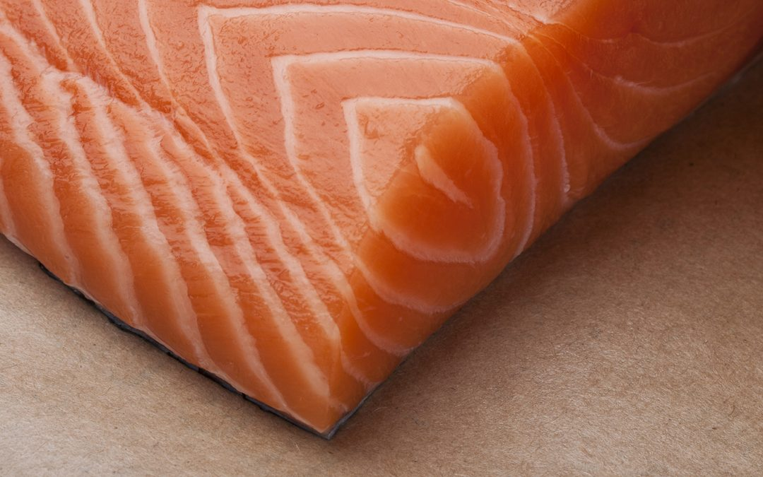 Why Verlasso Salmon is Superior